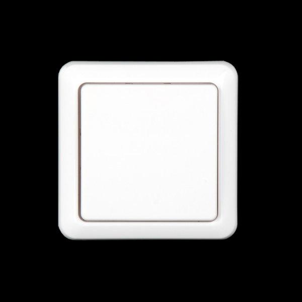 Funk Wandschalter drahtloser Schalter Wandmontage, kompt. Düwi Intertechno, Elro 433,92MHz