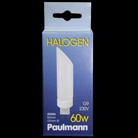 RARITÄT Paulmann 831.99 Halogen Birne 230V DecoPipe...